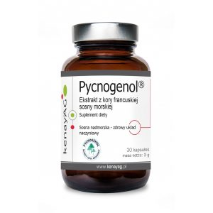 Pycnogenol ekstrakt z kory francuskiej sosny morskiej - Suplementy diety kenayAG